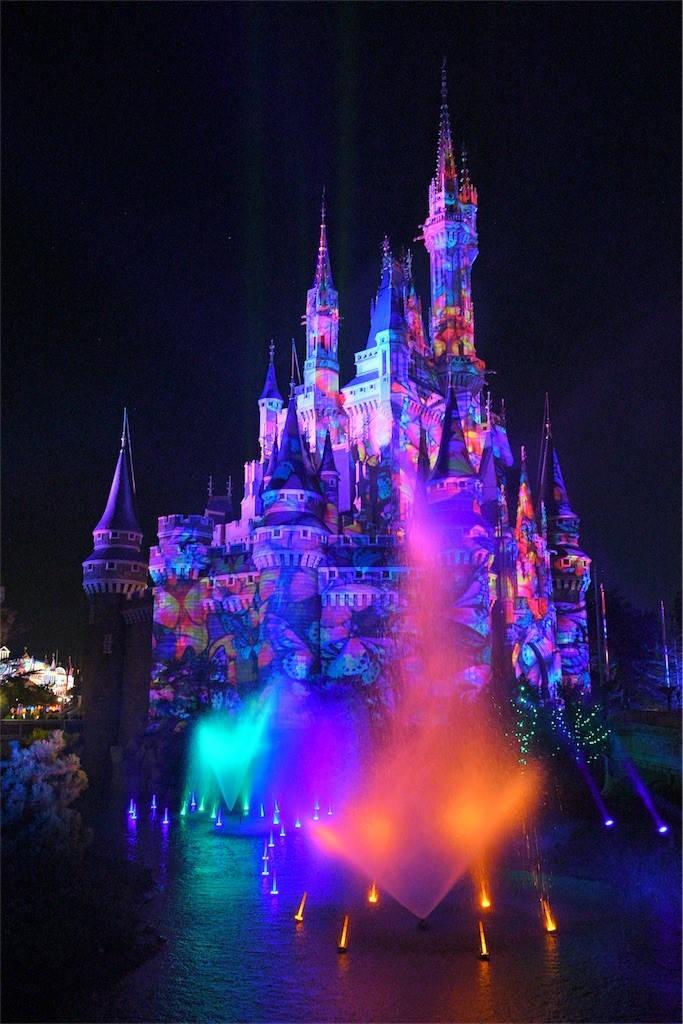 Celebrate!Tokyo Disney Land