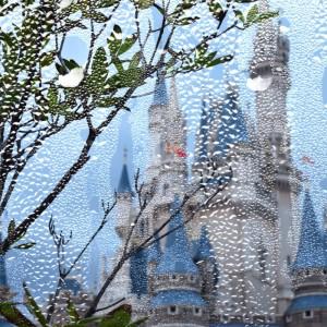 雨の日ディズニーランド